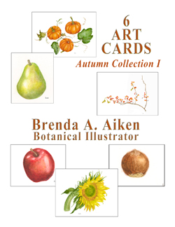 Autumn Cards