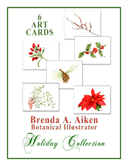 Holiday Collection Cards