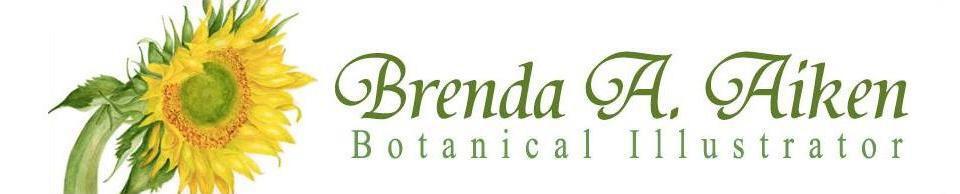 Brenda Aiken